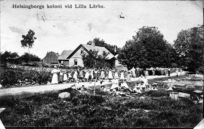 Helsingborgskoloni vid Lilla Lärka