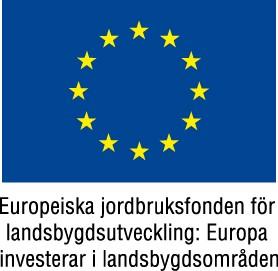 eu-flagga+europeiska+jordbruksfonden+farg